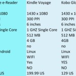 Should libraries get into the e-reader hardware business in time?